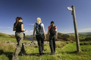 Glyndwr's Way sign