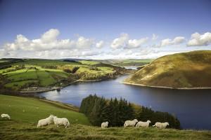 Llyn Clywedog Lake © Visit Wales Glyndwr's Way